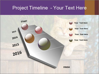 0000084900 PowerPoint Template - Slide 26