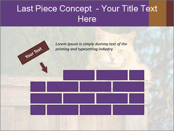 0000084900 PowerPoint Template - Slide 46