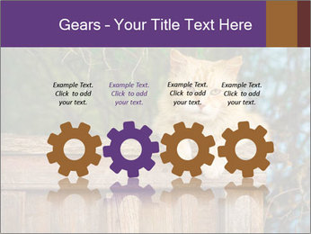 0000084900 PowerPoint Template - Slide 48
