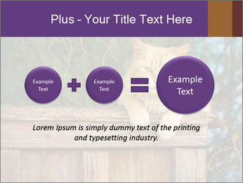 0000084900 PowerPoint Template - Slide 75