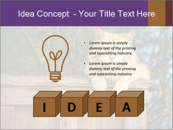 0000084900 PowerPoint Template - Slide 80