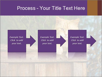 0000084900 PowerPoint Template - Slide 88