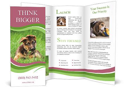 0000084903 Brochure Templates