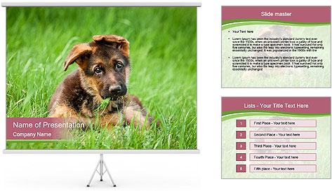 0000084903 PowerPoint Template