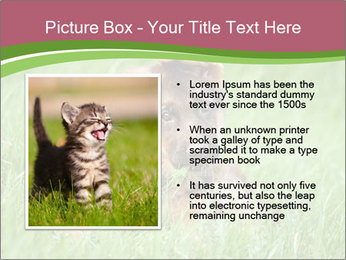 0000084903 PowerPoint Templates - Slide 13