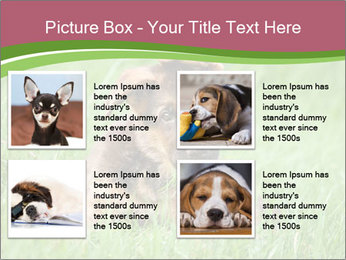 0000084903 PowerPoint Templates - Slide 14