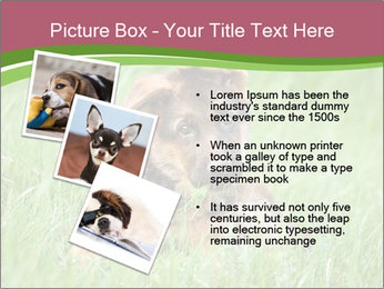0000084903 PowerPoint Template - Slide 17