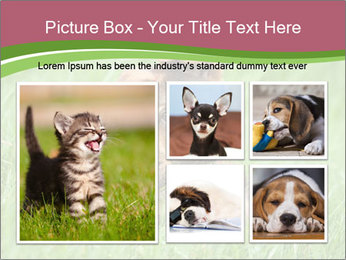 0000084903 PowerPoint Templates - Slide 19