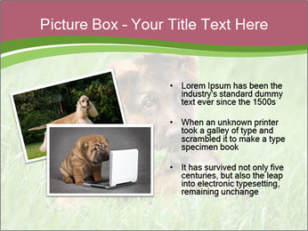 0000084903 PowerPoint Templates - Slide 20