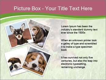 0000084903 PowerPoint Templates - Slide 23