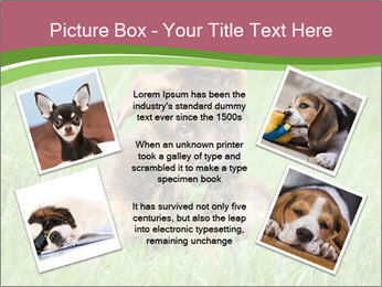0000084903 PowerPoint Templates - Slide 24