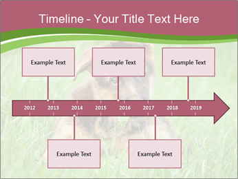 0000084903 PowerPoint Templates - Slide 28