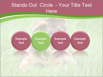 0000084903 PowerPoint Templates - Slide 76