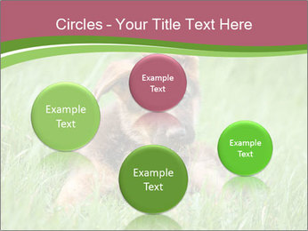 0000084903 PowerPoint Templates - Slide 77