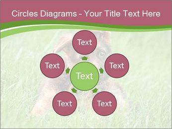 0000084903 PowerPoint Templates - Slide 78