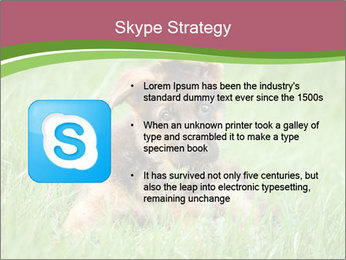 0000084903 PowerPoint Templates - Slide 8