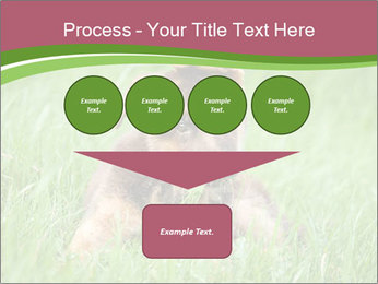 0000084903 PowerPoint Templates - Slide 93