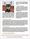 0000084903 Word Templates - Page 4