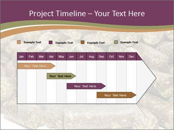 0000084910 PowerPoint Templates - Slide 25