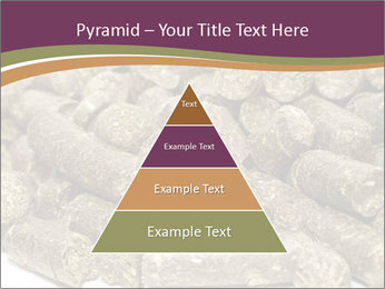 0000084910 PowerPoint Templates - Slide 30