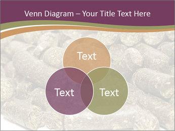0000084910 PowerPoint Templates - Slide 33