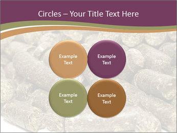 0000084910 PowerPoint Templates - Slide 38