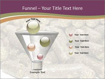 0000084910 PowerPoint Templates - Slide 63