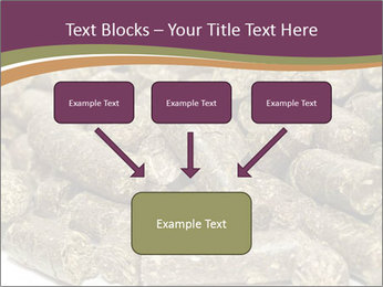 0000084910 PowerPoint Templates - Slide 70
