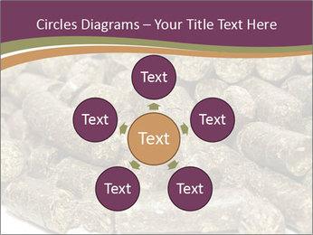 0000084910 PowerPoint Templates - Slide 78