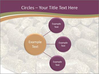 0000084910 PowerPoint Templates - Slide 79