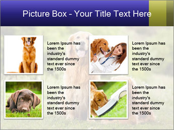 0000084912 PowerPoint Template - Slide 14