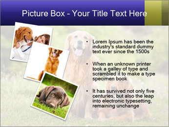 0000084912 PowerPoint Template - Slide 17