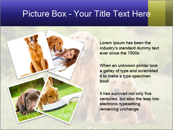 0000084912 PowerPoint Template - Slide 23
