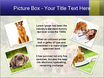 0000084912 PowerPoint Template - Slide 24