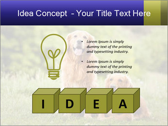 0000084912 PowerPoint Template - Slide 80