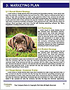 0000084912 Word Template - Page 8