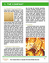 0000084927 Word Template - Page 3
