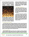 0000084927 Word Template - Page 4