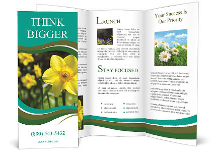 0000084930 Brochure Templates