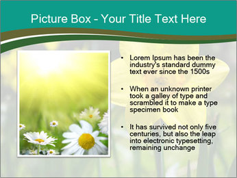 0000084930 PowerPoint Templates - Slide 13