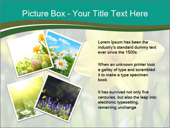 0000084930 PowerPoint Templates - Slide 23