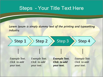 0000084930 PowerPoint Templates - Slide 4