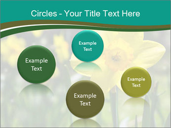 0000084930 PowerPoint Templates - Slide 77