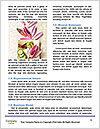 0000084936 Word Templates - Page 4