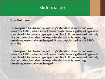 0000084956 PowerPoint Templates - Slide 2