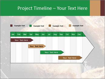 0000084956 PowerPoint Templates - Slide 25