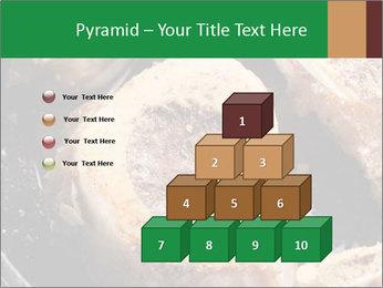 0000084956 PowerPoint Templates - Slide 31