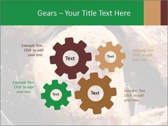 0000084956 PowerPoint Templates - Slide 47