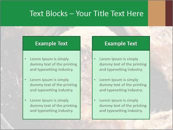 0000084956 PowerPoint Templates - Slide 57