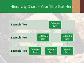 0000084956 PowerPoint Templates - Slide 67